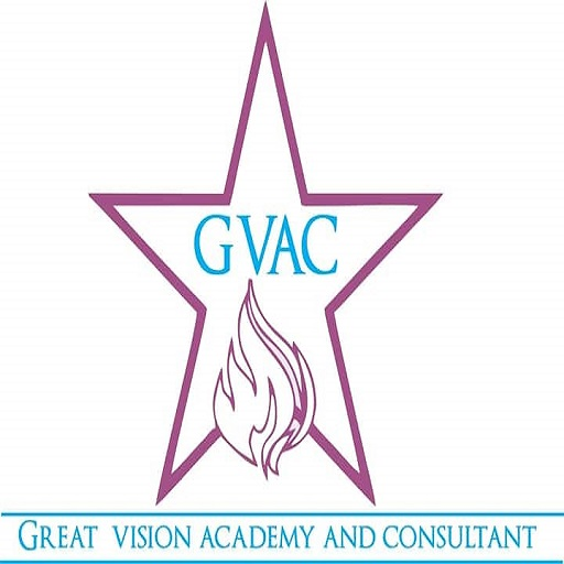 Great Vision Academy Consultant